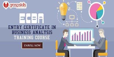 ECBA (Entry Certificate in Business Analysis) Training Course in Winnipeg-Canada