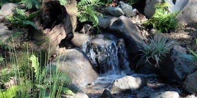 Pondless Waterfall & Stream Build