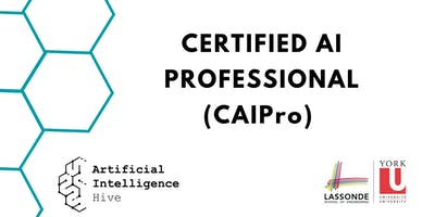 Certified AI Professional (CAIPro) Program