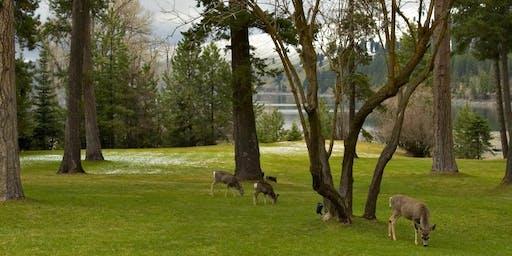 IN A LANDSCAPE: Wallowa Lake Lodge 4:00pm Wed, 9/18