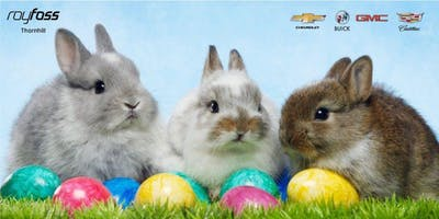 The Easter Bunny is Coming to Roy Foss Thornhill!