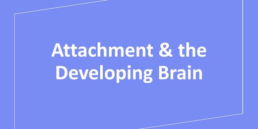 Attachment & the Developing Brain