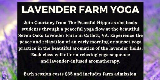 Lavender Farm Yoga -June 23rd