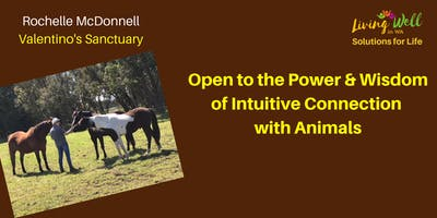 Intuitive Connection with Animals