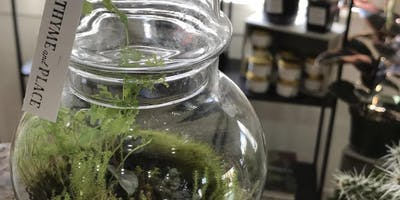 Terrarium Making - May 29