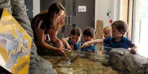 Hatchling Marine Biologist - FISH Course