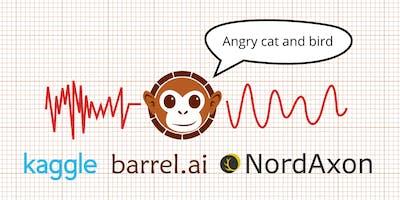 Barrel.ai Kagglethon