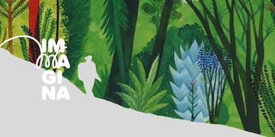Il bosco degli albi illustrati — Corso per i più grandi