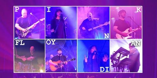 Pink Floydian - Live in Concert
