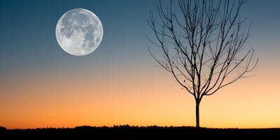 Full Moon Sacred Circle - Journey Through Scent and Sound - with Artis May 18th