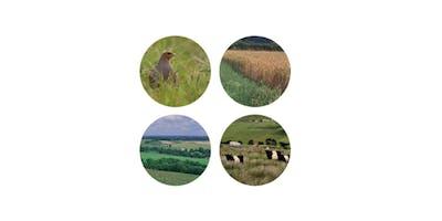 Countryside Stewardship Mid Tier one-to-one clinics - Swaffham/Norwich