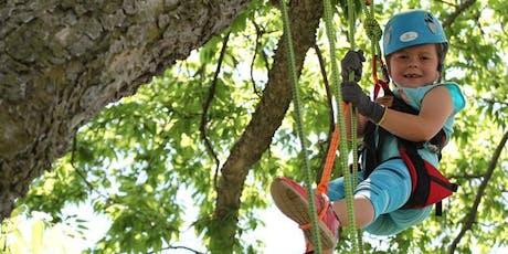Recreational Tree Climbing tickets