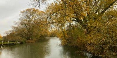 School Holiday Activities - River Dipping on the River Cole