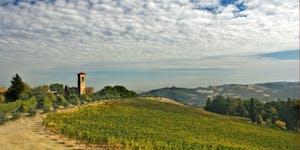 Lambrusco: Prickelnde Vielfalt aus der Emilia Romagna
