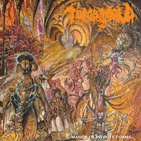Tomb Mold, Superstition