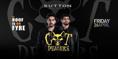 Cat Dealers @Sutton