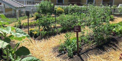 Expand Your Growing Season: Mid-Summer Garden Maintenance