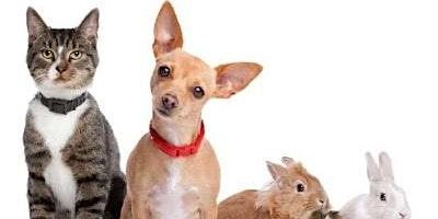 Tri County Animal Shelter Pet Adoptions
