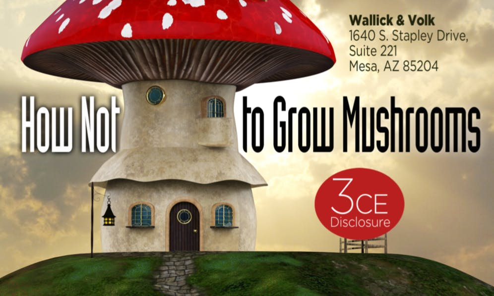 How not to grow Mushrooms - Disclosure Law