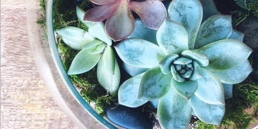 Succulent Terrarium Workshop at The White Butterfly