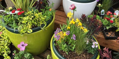 Spring Container Combinations - Lake Oswego