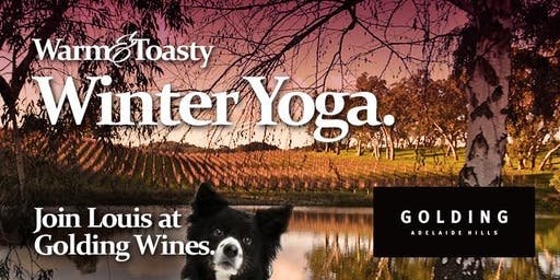 Warm & Toasty Winter Yoga & Wine