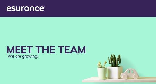 Meet the Team- Esurance is Growing!