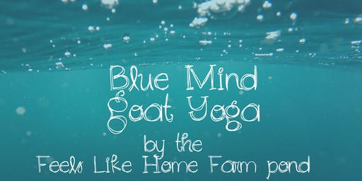 Feels Like OM Blue Mind Goat Yoga