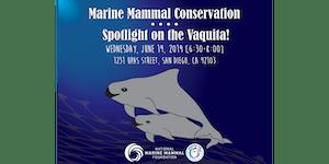 Marine Mammal Conservation - Spotlight on the Vaquita