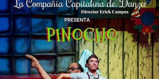 PINOCHO Domingo 16