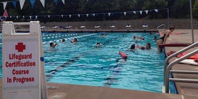 Sherman Oaks Fun Red Cross Lifeguard Training REVIEW-- ONE-DAY course