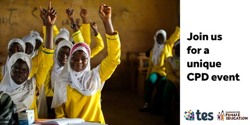 Tes and Camfed teaching CPD event