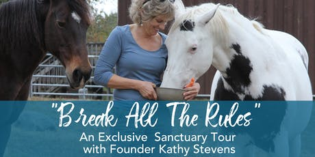October 12th 2019 11:00 AM Break All The Rules Tour with Kathy Stevens  tickets