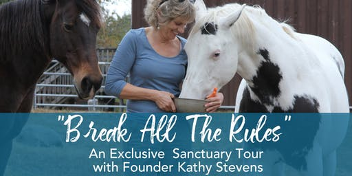 October 12th 2019 11:00 AM Break All The Rules Tour with Kathy Stevens