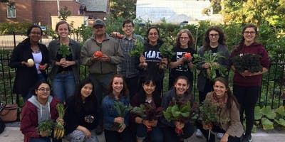 Garden & Cooking Sessions - Multi-week Series (McMaster Students)