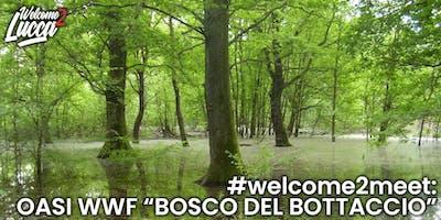 """#welcome2meet: oasi Wwf """"Bosco del Bottaccio"""""""