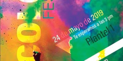 Lince Color Fest 2019