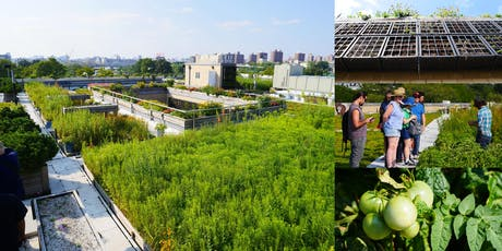 Exploring the NYC Parks 5 Borough Complex, World's Most Diverse Green Roof tickets