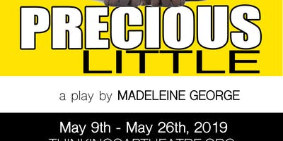 Precious Little a Dark Comedy by Madeleine George