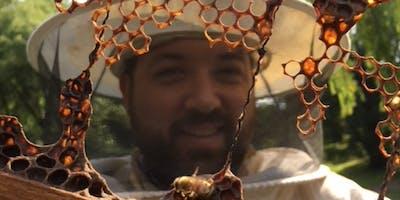 Beehive Tour