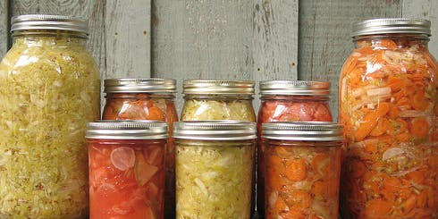 Introduction to Fermenting Workshop