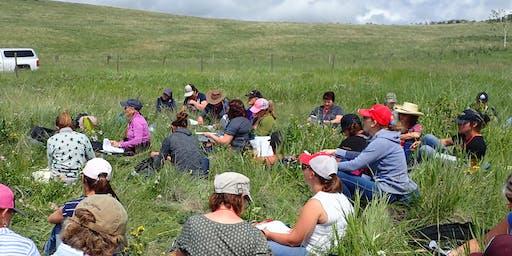 16th Annual Southern Alberta Grazing School for Women