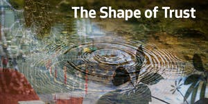 The Shape of Trust   Stories of Racism, Racial Equity,...