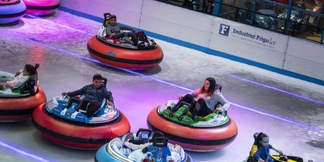 Bumper Cars On Ice: Melbourne tickets