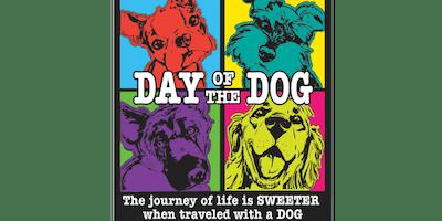 2019 Day of the Dog 1 Mile, 5K, 10K, 13.1, 26.2 -Chicago