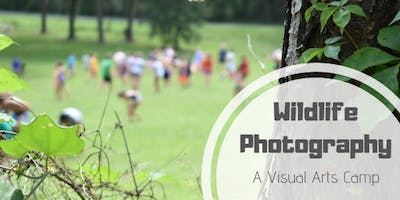 Wildlife Photography Camp 2019 (ages 8-12)