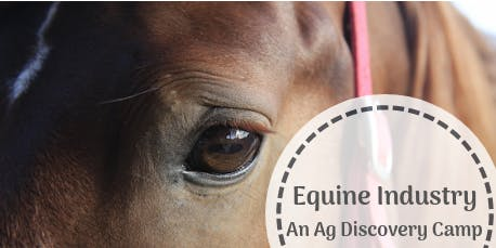 Ag Discovery | Equine 2019 (ages 10-13)