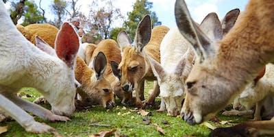 Caversham Wildlife Park Excursion