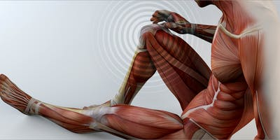 Strength & Neuromuscular Conditioning for Rehabilitation