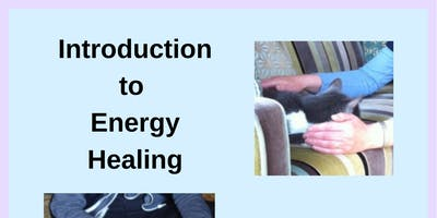 Introduction to Energy Healing for Your Animal Friends